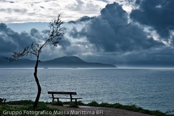 00080c_natura_toscana07.jpg