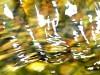 carlodelli-9b-Italia-sole sull'acqua