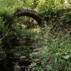 Raf – Riflessi Associazione Fotografica - Marina Ceccarini Montorgiali Ponte Romano